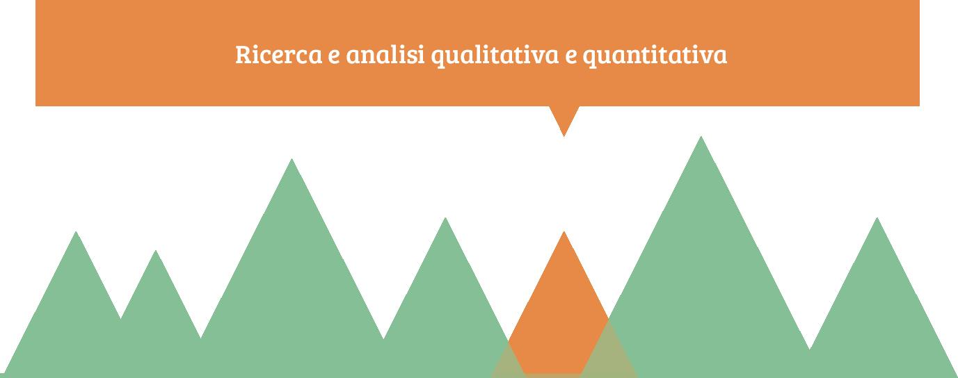 ricerca e analisi qualitativa e quantitativa