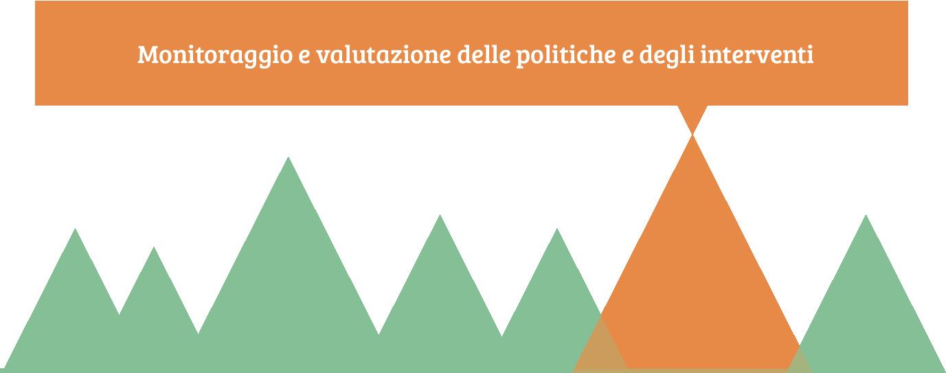 monitoraggio e valutazione delle politiche e degli interventi